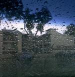 Raincar2